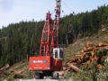 NorthPac-Forestry-Group-Logging