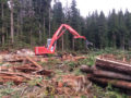 NorthPac-Forestry-Group-Logging-2